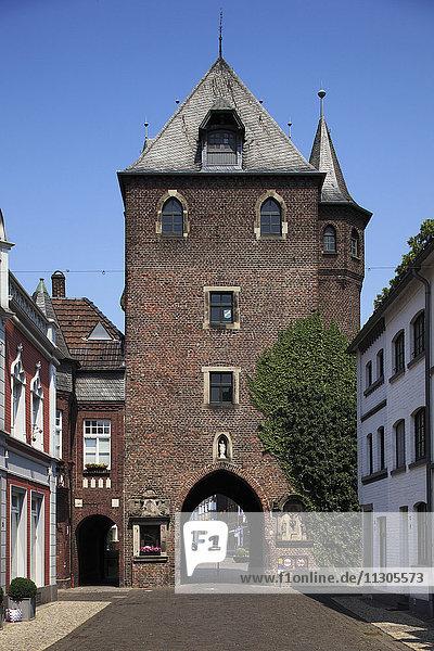 Cow's gate in Kempen  Lower Rhine  North Rhine-Westphalia