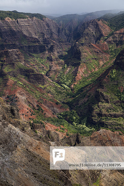 Kauai  Waimea  canyon  State park  USA  Hawaii  America  scenery  landscape