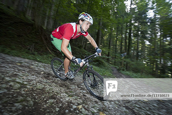 Bike  bicycle  mountain bike  sport  action  dynamical  man  wood  forest  downhill  Austria  helmet  risk