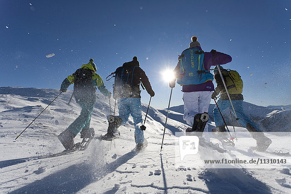 Snow shoe  group  Snow shoe walking  Snow shoe hiking  Innerkrems  Austria  Carinthia  sport  winter Snow shoe, group, Snow shoe walking, Snow shoe hiking, Innerkrems, Austria, Carinthia, sport, winter