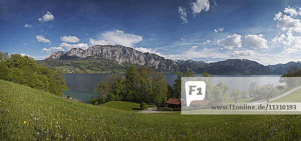 Austria  Salzkammergut  Attersee  Upper Austria  panorama  scenery  lake  meadow