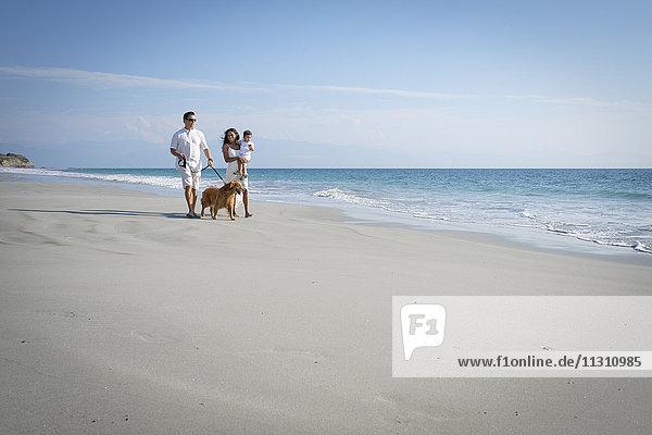 Familienspaziergang am Strand mit Hund