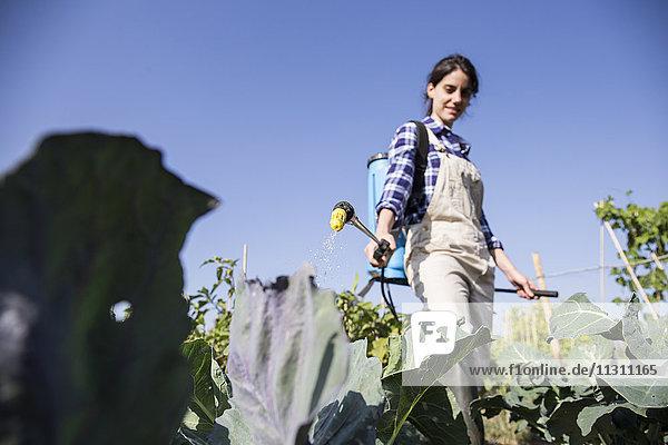 Frau bei der Arbeit auf dem Bauernhof Spritzdünger