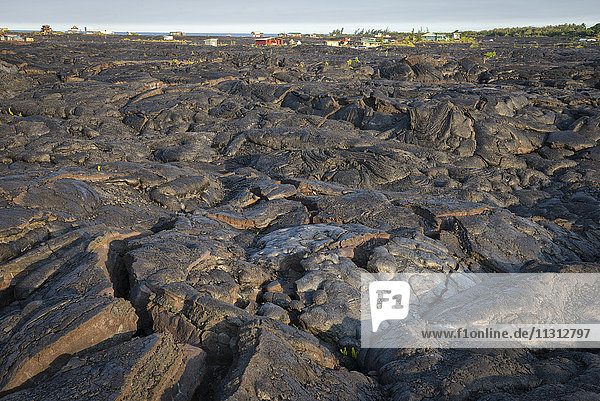 USA  Vereinigte Staaten  Amerika  Hawaii  Big Island  Puna District  lava desert and houses