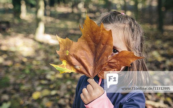 Kleines Mädchen versteckt ihr Gesicht hinter dem Herbstblatt