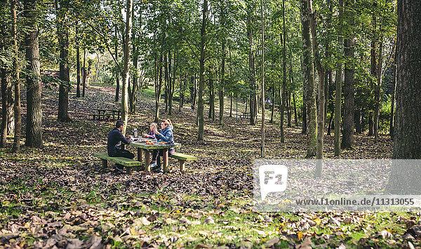 Familie beim Picknick im Wald