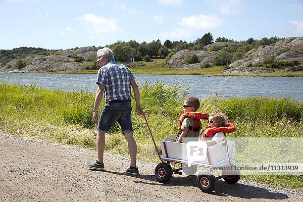 Grandfather hauling children on cart
