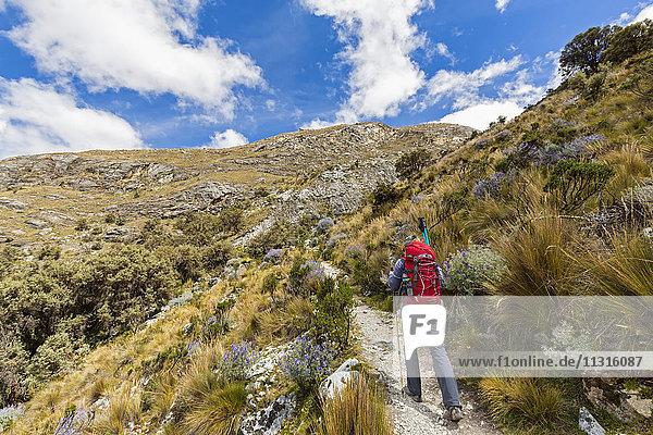 Peru  Anden  Cordillera Blanca  Huascaran Nationalpark  Tourist auf Wanderweg