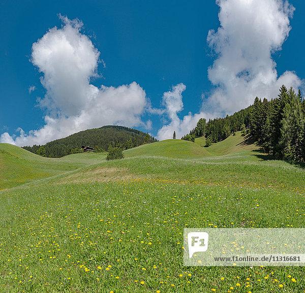 Sillian  Austria  Rolling hills at the mount Sillianberg