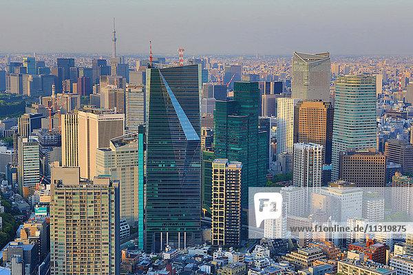 Japan  Tokyo City  Minato District  Skytree Tower