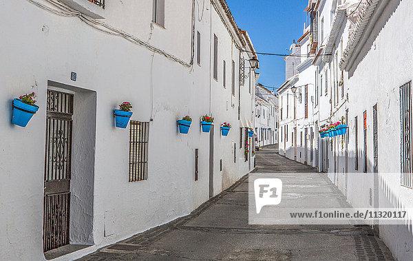 Spain  Andalucia  Malaga Province  Mijas City