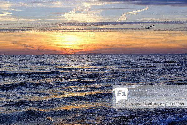 Deutschland  Usedom  Bansin  Sonnenaufgang über Meer