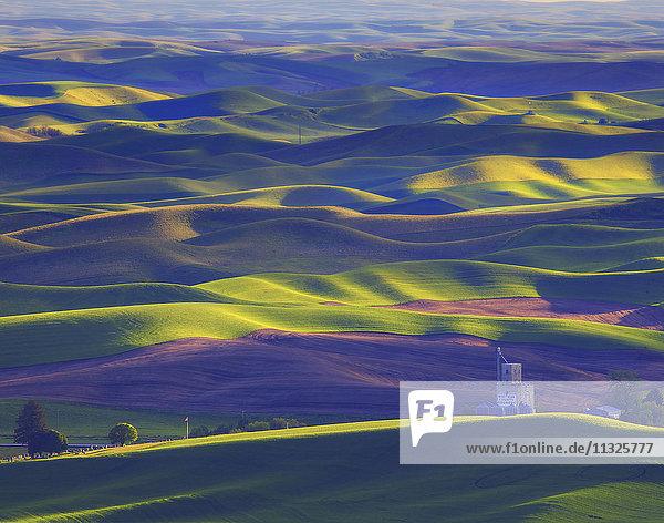 agriculture and rolling hills in Washington State