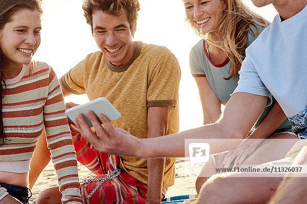Glückliche Freunde mit Handy am Strand