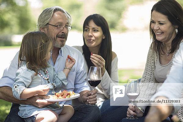 Großfamilie beim Picknick mit Snacks und Wein