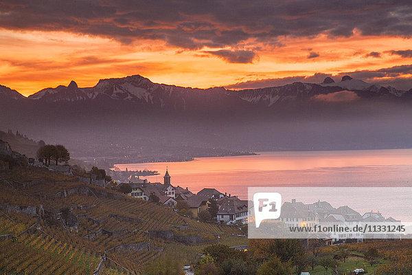Village Rivaz on lake Geneva in autumn