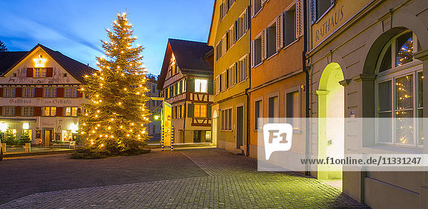 Christmas tree in Thal  canton of St. Gall