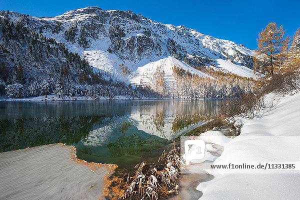 Palpuognasee lake in winter in Grisons