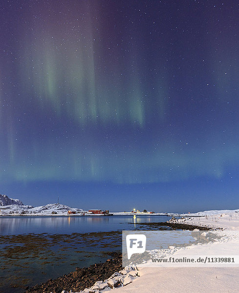 Northern lights (Aurora Borealis) on the snowy peaks reflected in the cold sea  Volanstinden  Fredvang  Lofoten Islands  Northern Norway  Scandinavia  Europe
