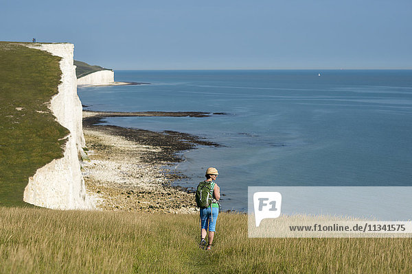 A woman walks along the cliffs near Beachy Head with views of the Seven Sisters coastline in the distance  South Downs National Park  East Sussex  England  United Kingdom  Europe