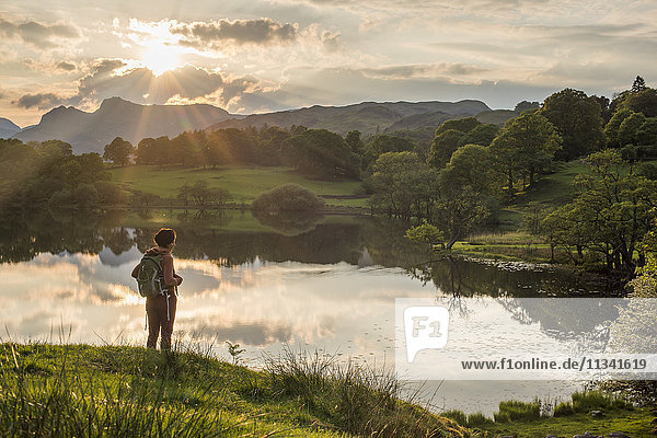 A woman looks out over Loughrigg Tarn near Ambleside  Lake District National Park  Cumbria  England  United Kingdom  Europe