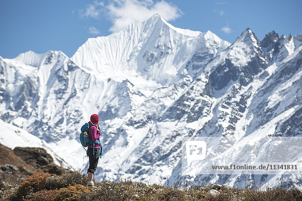 A woman trekking in the Langtang Valley with a view of Ganchempo in the distance  Langtang Region  Himalayas  Nepal  Asia