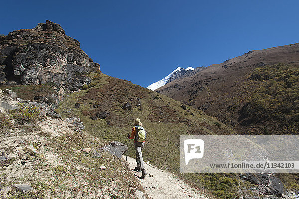 Trekking in the Kagmara Valley with the first glimpse of Lhashama in the distance  Dolpa Region  Himalayas  Nepal  Asia