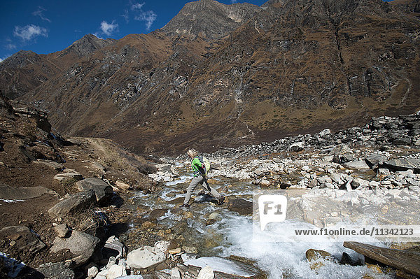 Stepping stones and stream on the trail in the Kagmara Valley  a less trodden path  Dolpa  Nepal  Asia