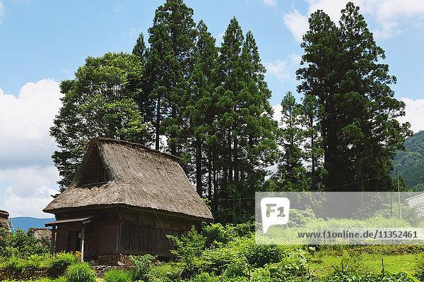 Traditional Japanese village in Gokayama  Toyama Prefecture  Japan