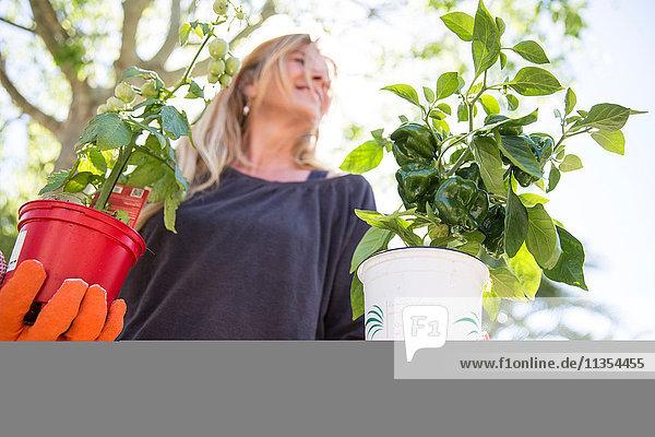 Niedrigwinkelansicht einer Frau  die Pflanzen im Garten trägt