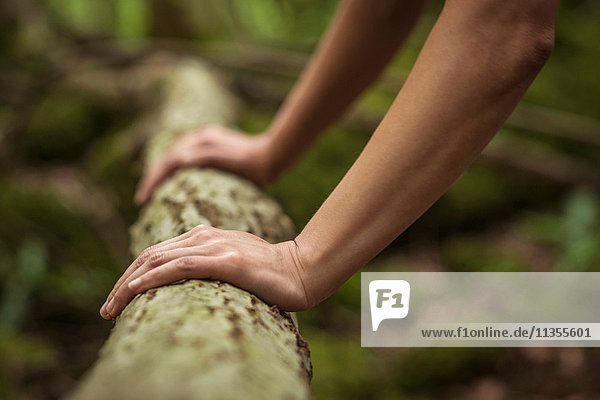 Mid adult woman exercising in forest  doing push-ups on log  close-up