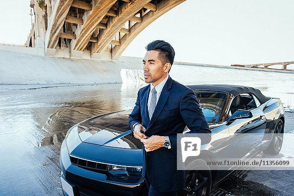 Geschäftsmann mit dem Auto unter der Brücke  Los Angeles River  Kalifornien  USA
