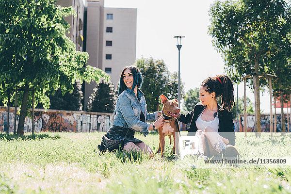 Zwei junge Frauen sitzen mit Pitbull Terrier im Stadtpark