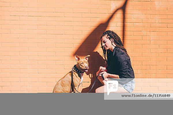 Junge Frau mit Dreadlocks kauert zu Pitbull Terrier vor oranger Wand