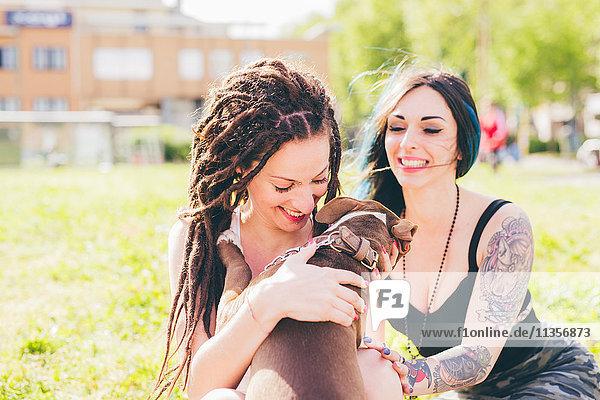 Tätowierte junge Frauen spielen mit Pitbull Terrier im Stadtpark