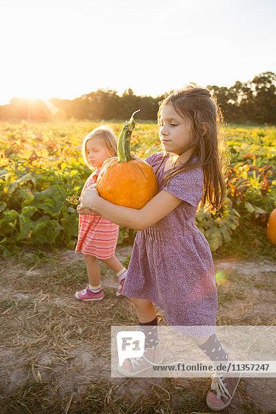 Junges Mädchen neben Kürbisbeet  Kürbis tragend