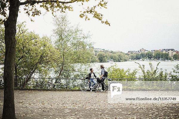 Volle Länge von Freunden mit Fahrrädern an Pflanzen und Fluss im öffentlichen Park gegen klaren Himmel