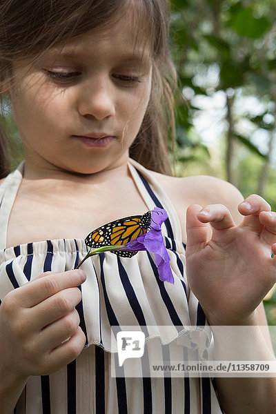 Girl holding monarch butterfly on flower