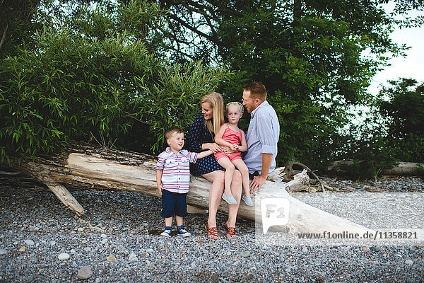 Mid adult parents with boy and girl relaxing on tree trunk at Lake Ontario  Oshawa  Canada