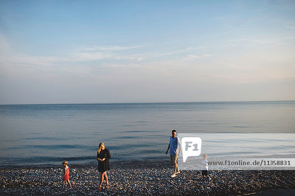 Mid adult parents strolling with boy and girl on pebble beach at Lake Ontario  Oshawa  Canada