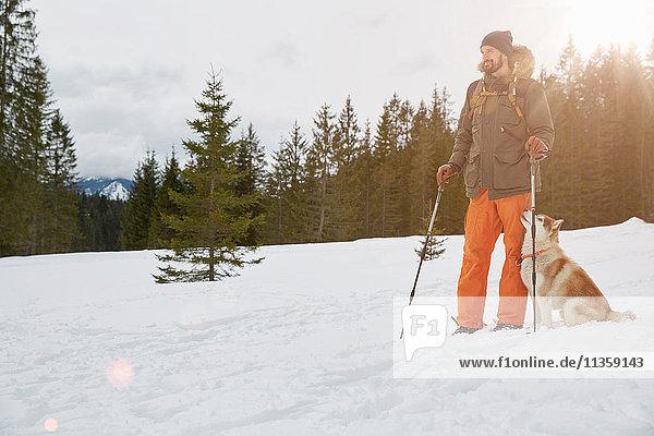 Mid adult man on snow shoes  dog beside him  Elmau  Bavaria  Germany