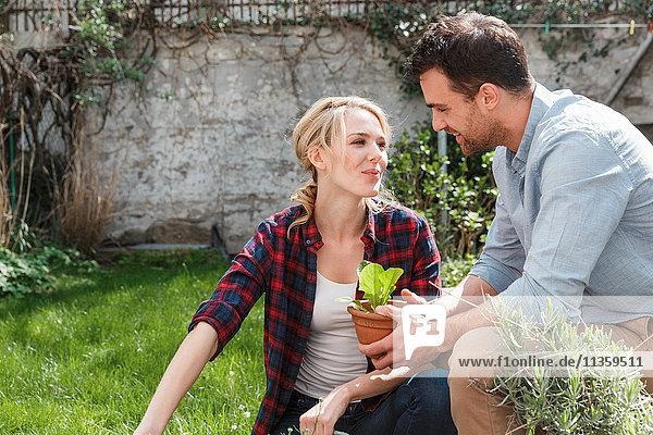 Ehepaar im Garten bei der Pflanzenpflege