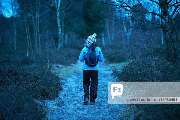 Rückansicht einer Wanderin  die in der Dämmerung im Wald wandert