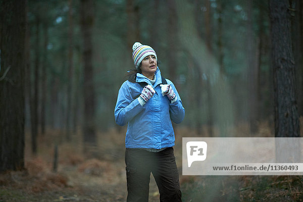 Female hiker hiking in forest