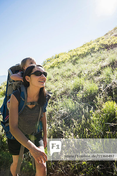 Mother carrying young daughter on back  hiking the Bonneville Shoreline Trail in the Wasatch Foothills above Salt Lake City  Utah  USA