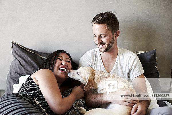 Auf dem Bett liegendes Paar spielt mit Hund