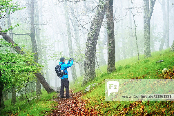 Man taking photograph while hiking in Shenandoah National Park  Virginia  USA