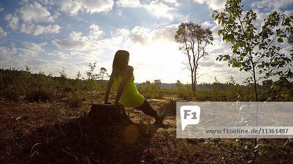 Rückansicht einer Frau beim Trizeps-Dip auf einem Felsen