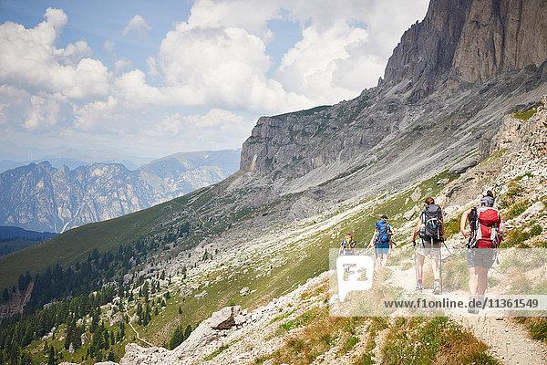 Rückansicht von Wanderern auf Bergpfad  Österreich