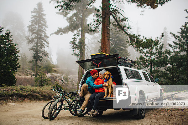 Couple and dog sitting on tailgate of jeep wagon  Sequoia National Park  California  USA
